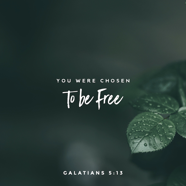 You were chosen to be free